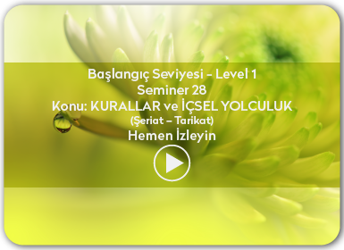 Kuantum ve Sufizm ile Öze Yolculuk Başlangıç Seviyesi / Level 1 / Seminer 28