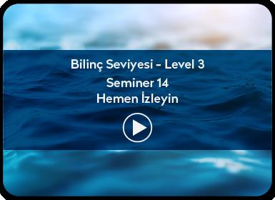 Kuantum ve Sufizm ile Öze Yolculuk Bilinç Seviyesi / Level 3 / Seminer 14